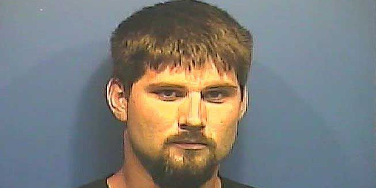 Brookport man facing charges of burglary, assault