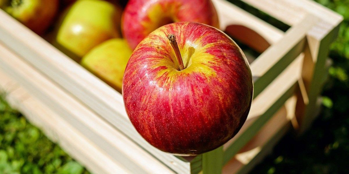 RECALL: apples sold in MO may be contaminated