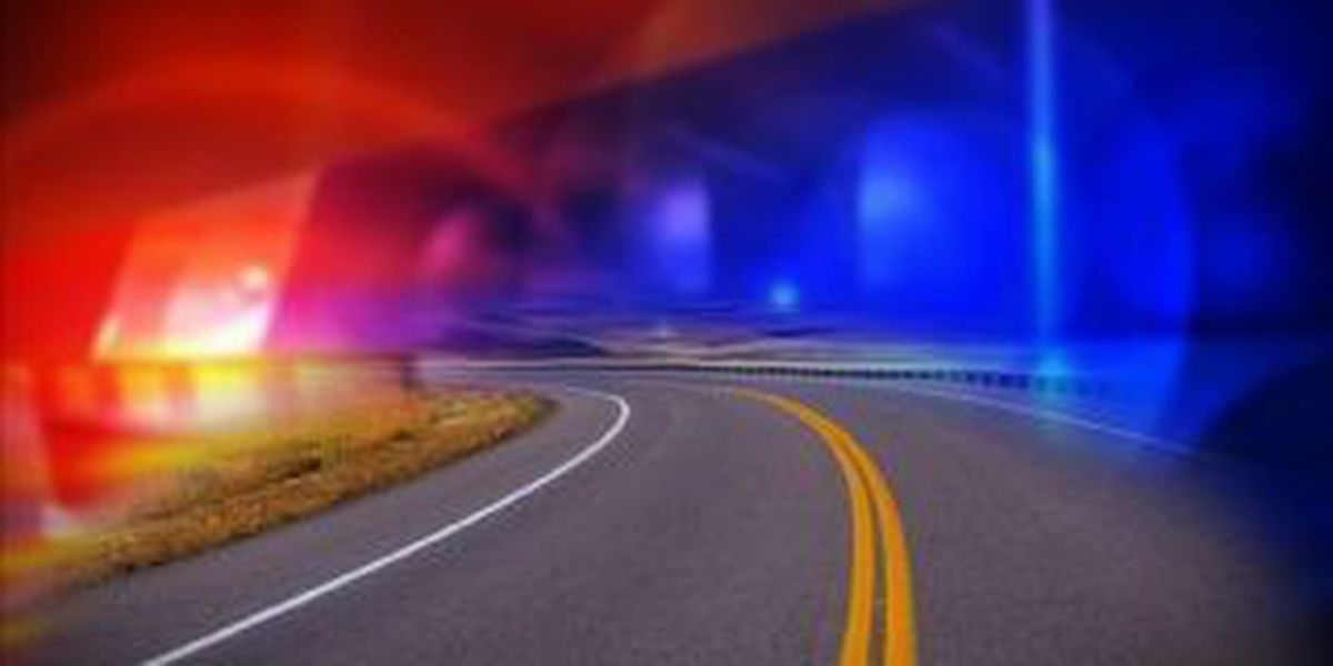 5 injured after van hits horse on Mo. highway
