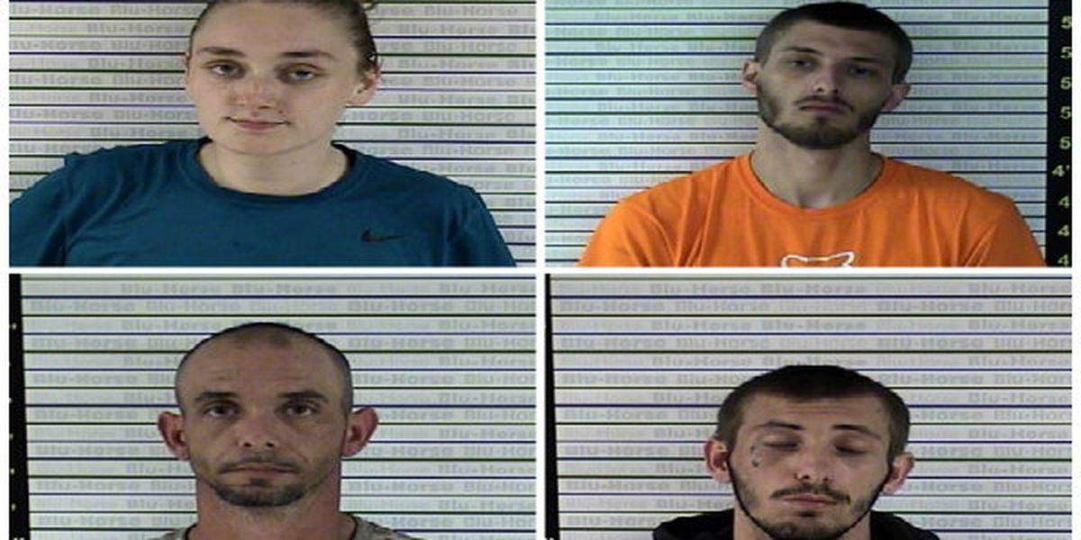 4 arrested after search turns up drugs at home