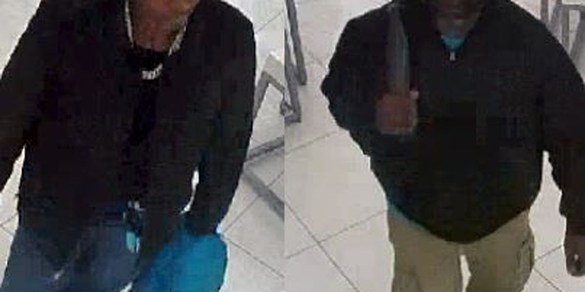 Carbondale police look to identify mall theft suspects