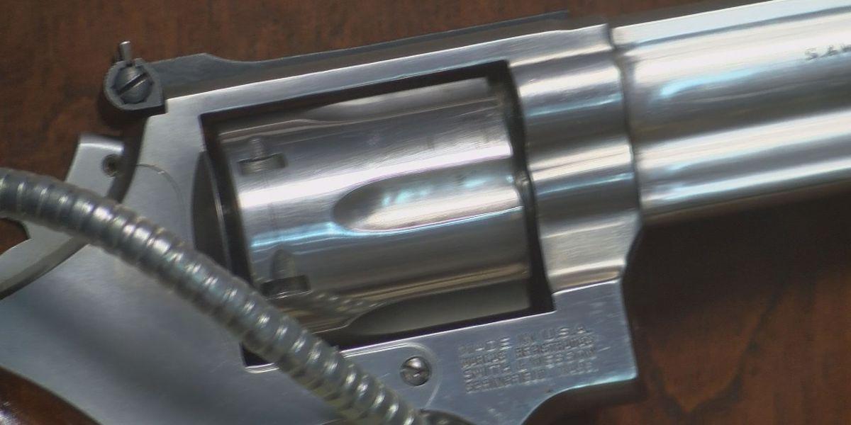 Missouri House passes ban on enforcement of federal gun laws