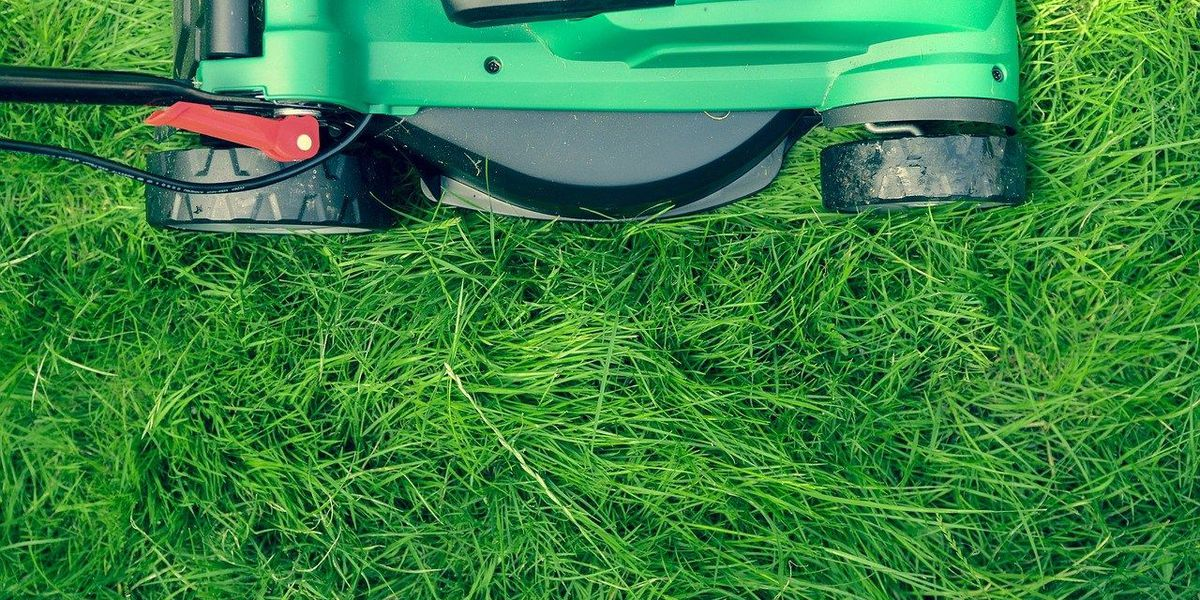 Greenskeeper tips for a lush, green lawn