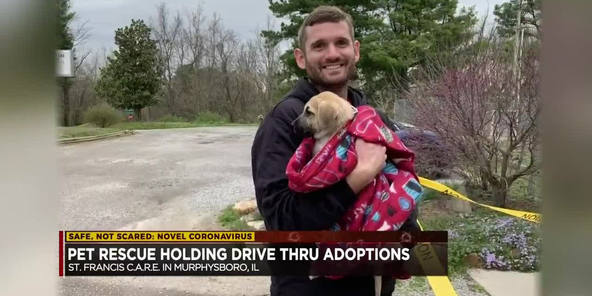 St. Francis CARE holding drive-thru adoptions