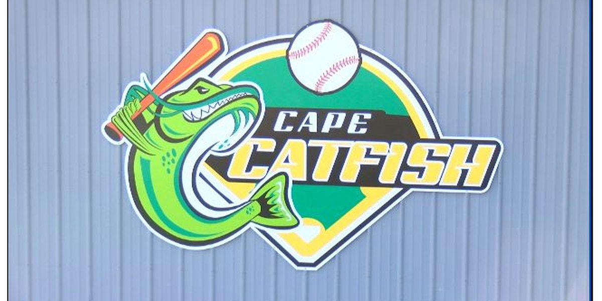 Cape Catfish to play 2021 season