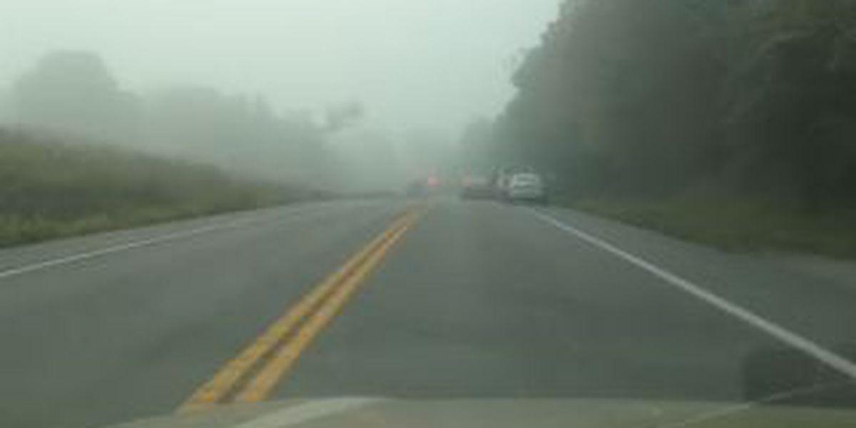 79-year-old dies in Bollinger Co. crash