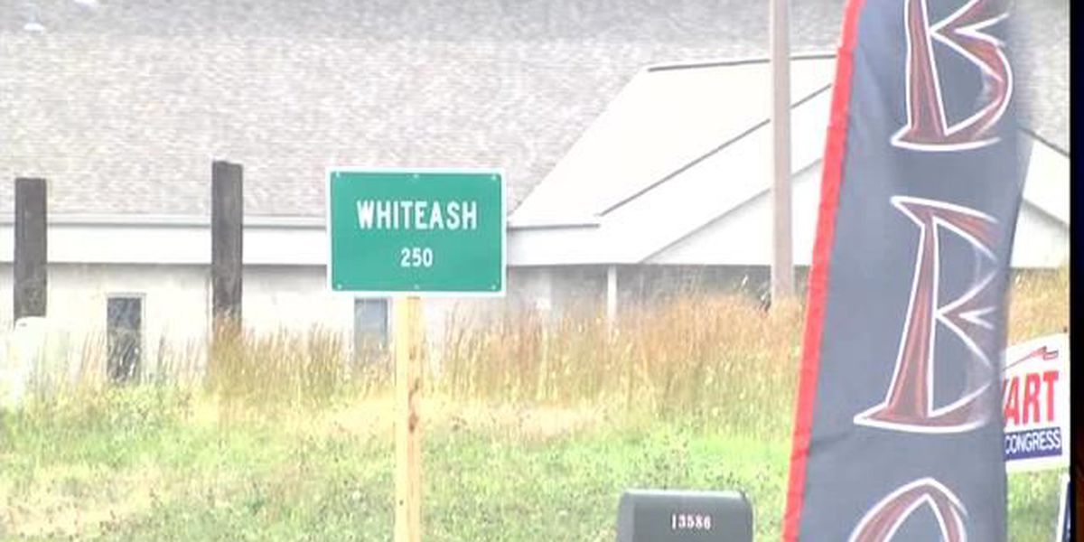 Will Whiteash be the first Illinois village to dissolve?