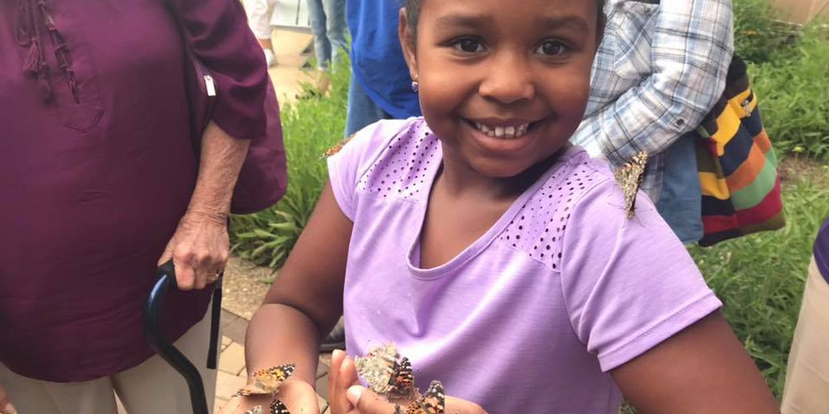"Butterflies to be released as part of Southeast Health's ""Let's Celebrate Life"""