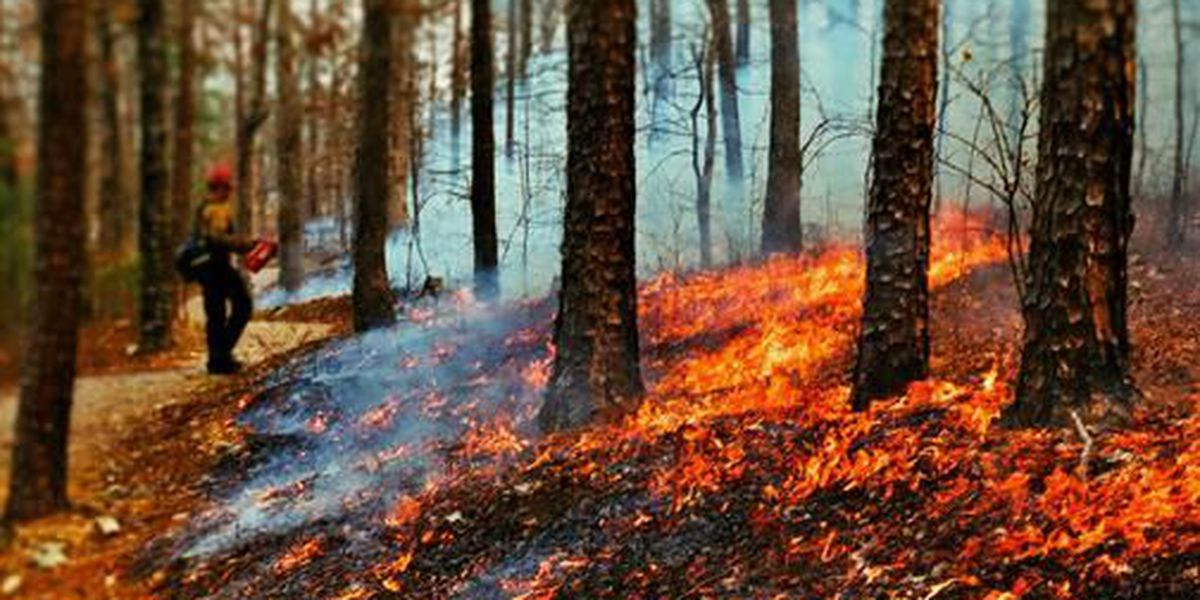 Missouri Department of Conservation to hold prescribed fire workshop