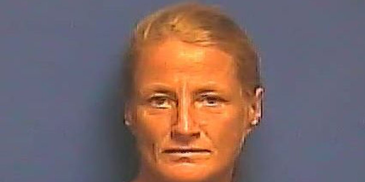 KY woman facing fraud, theft charges