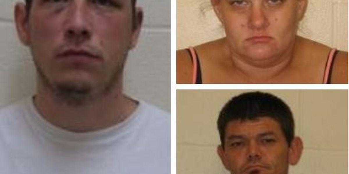 Three arrested in Franklin Co., IL burglary investigations