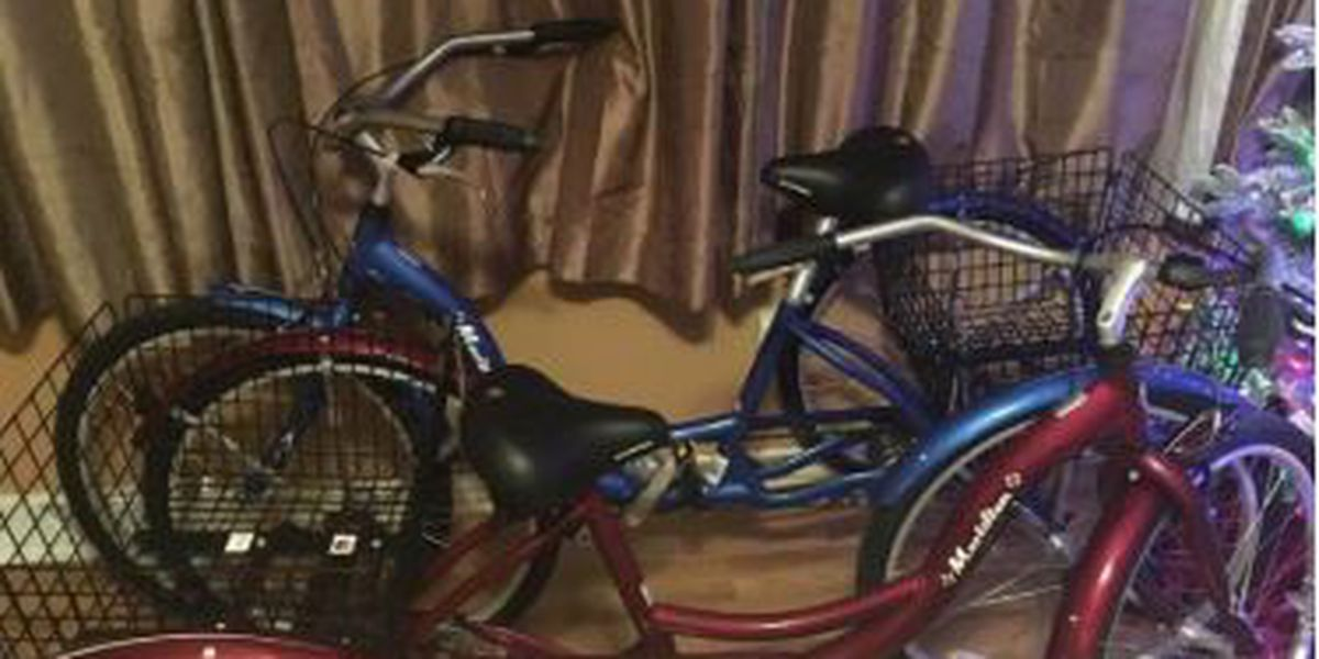 Mother wants thief to return tricycles stolen from her children