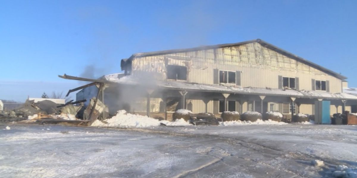 10 horses dead, 15 saved after large stable fire in Cape Girardeau Co., Mo.