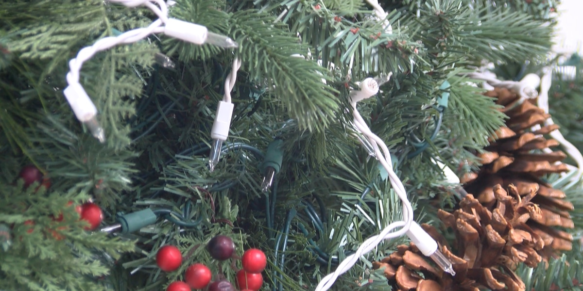 Eco-friendly ways to dispose of Christmas lights