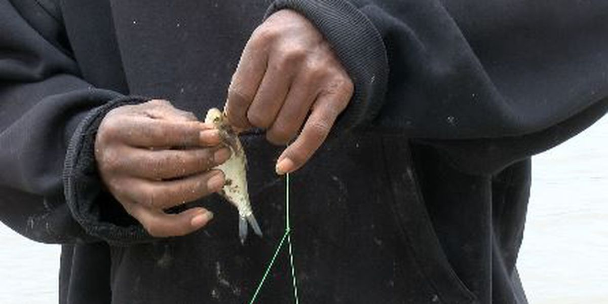 Mo. Dept. of Conservation holds free fishing day