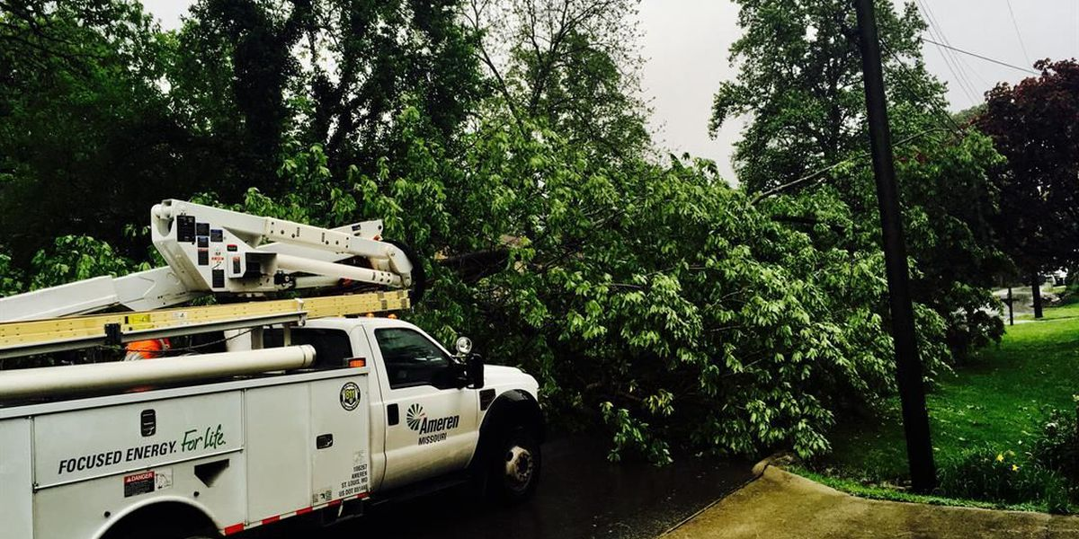 Downed tree knocks out power line in Cape Girardeau