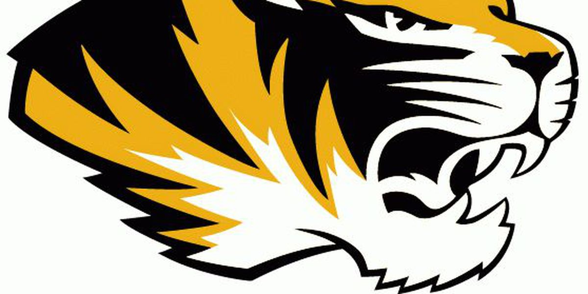 Mizzou falls to South Carolina