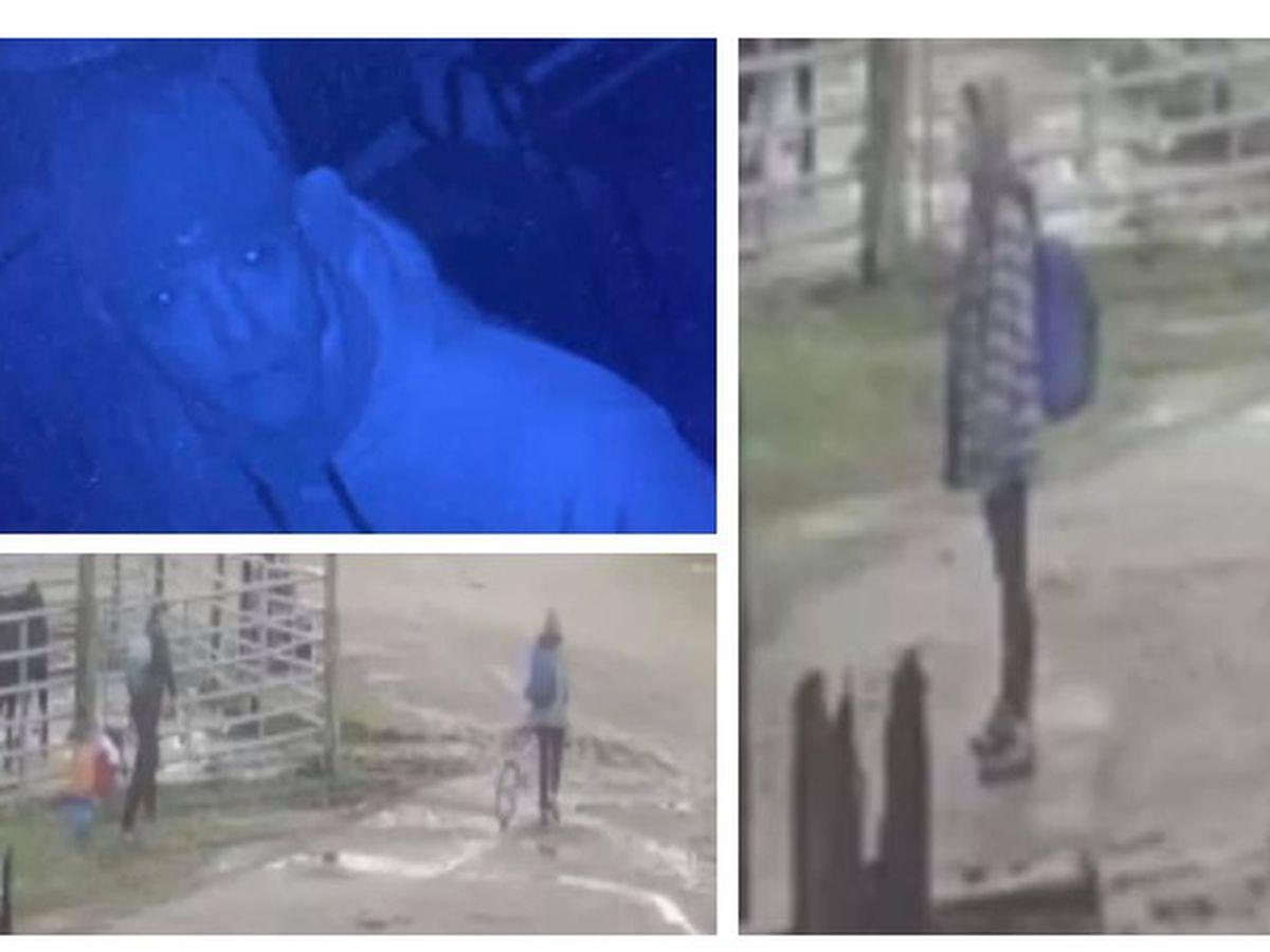 Sheriff asks for help to identify burglary suspects