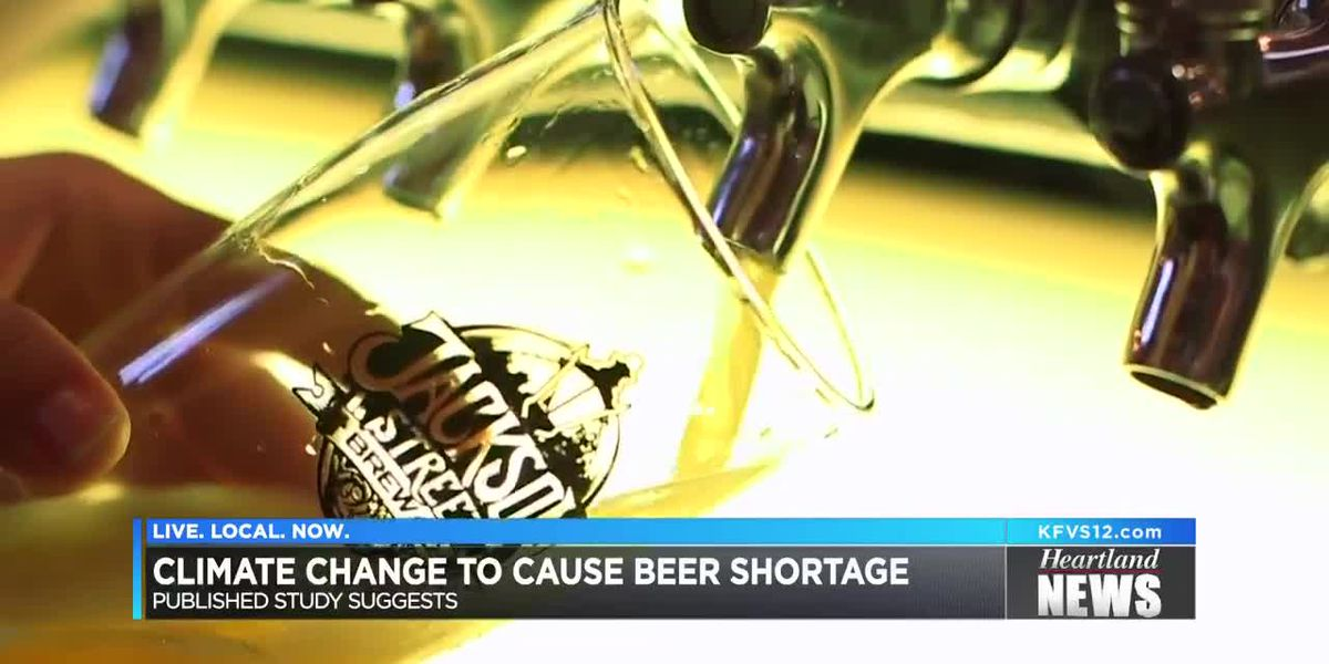 Study finds climate change could really hurt beer