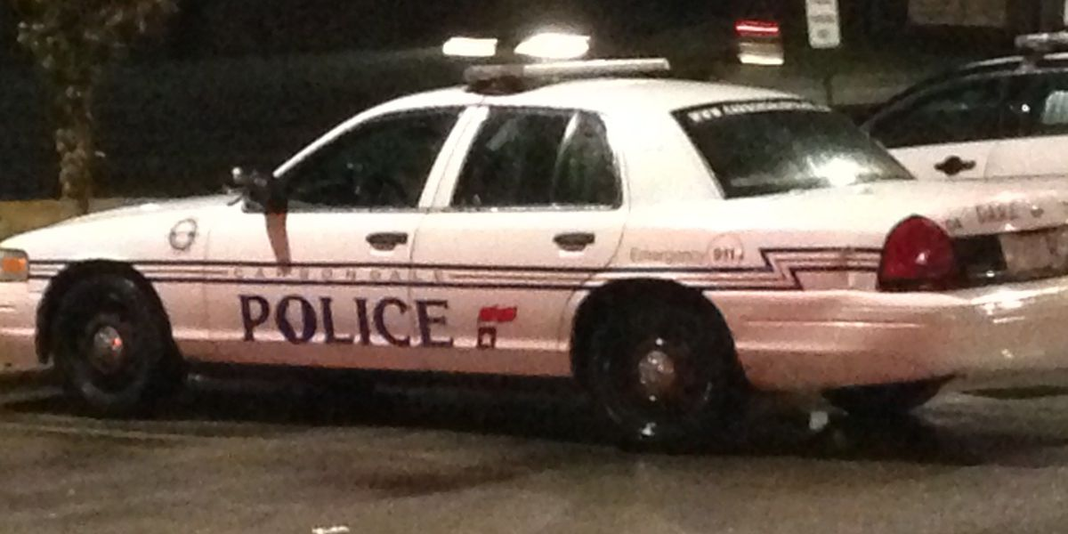 Shots fired call leads to arrest in Carbondale