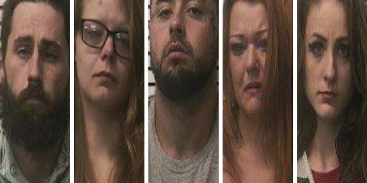 Armed robbery in Carbondale, 5 suspects arrested