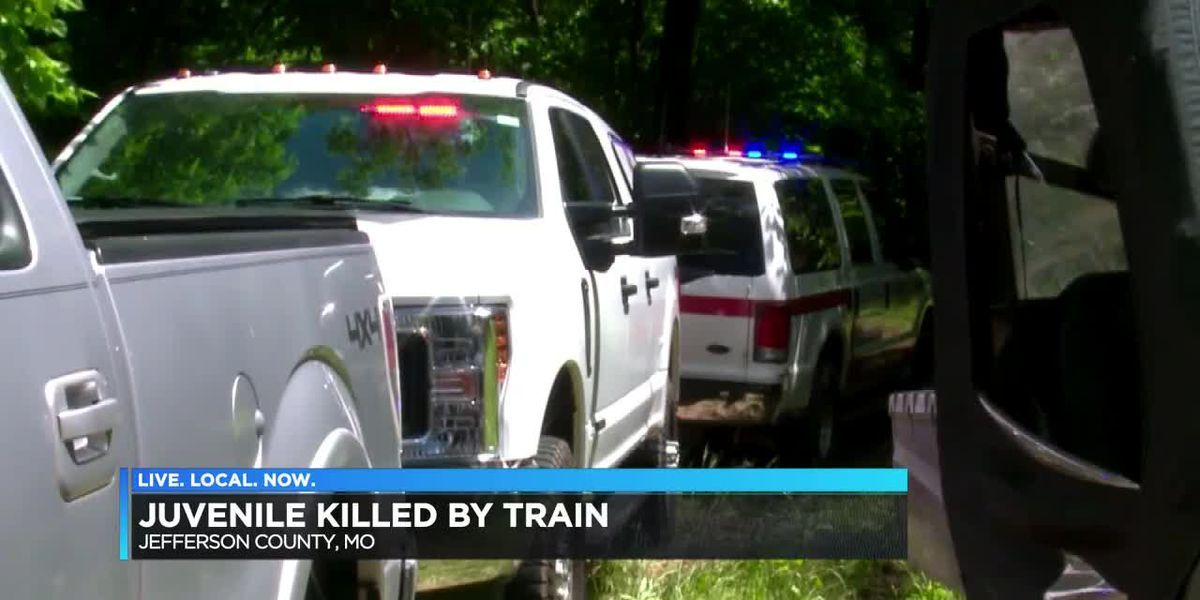 Juvenile hit and killed by train
