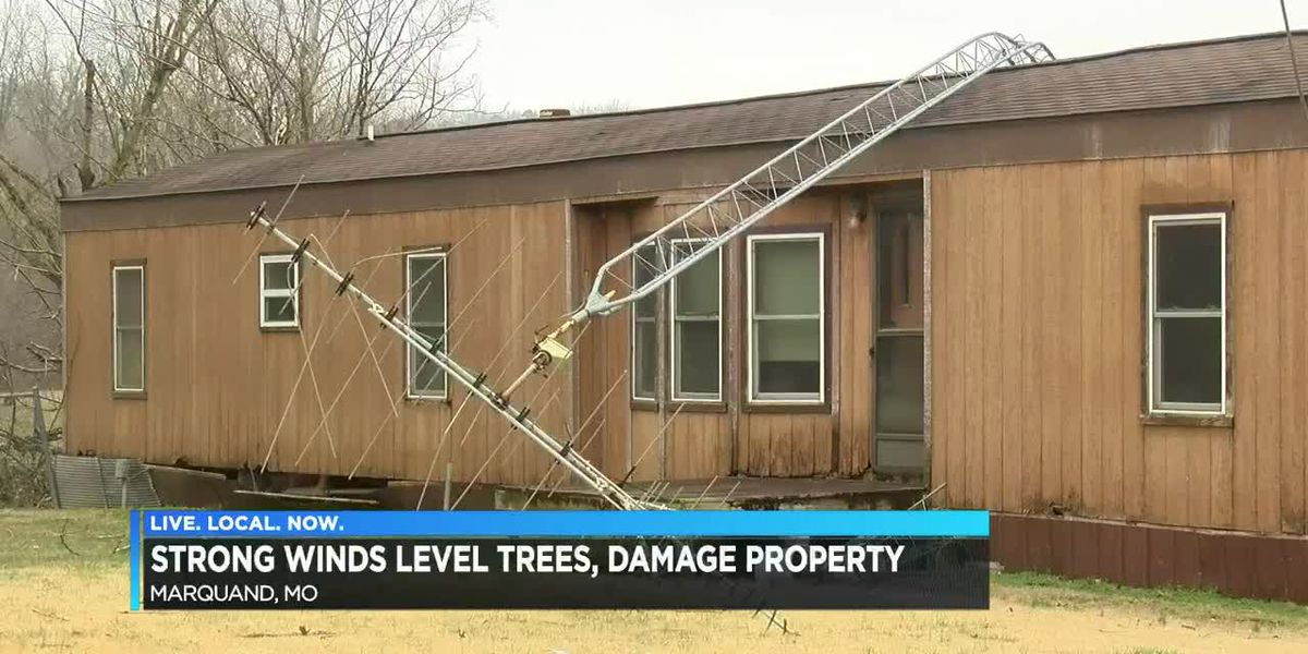 Strong winds level trees and damage property in Marquand, MO