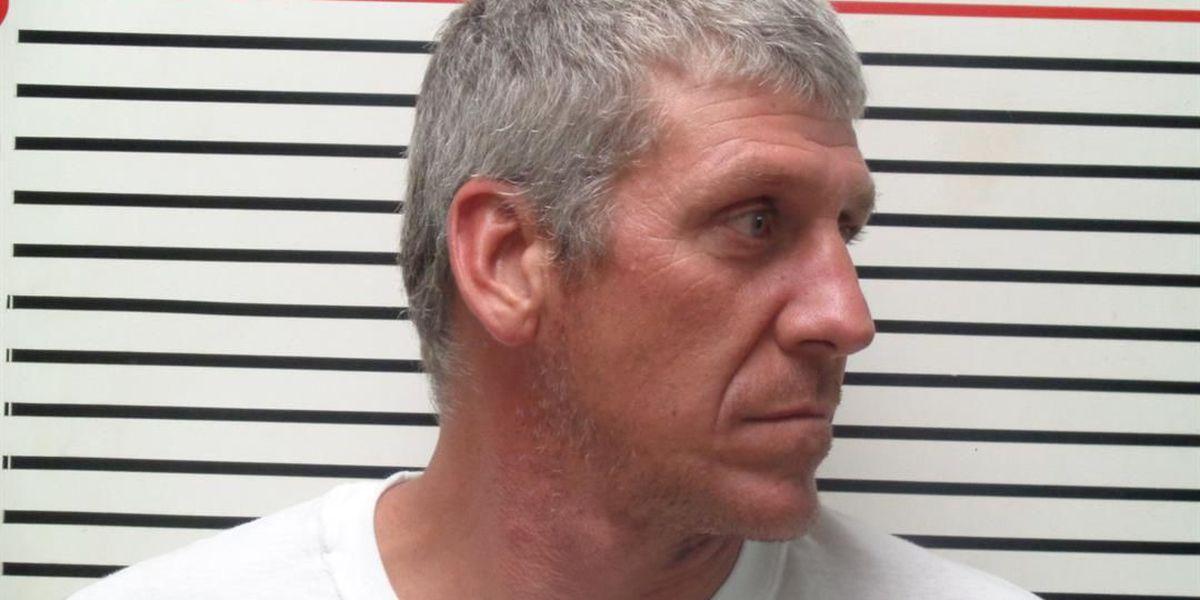 Murphysboro PD: Suspect in double hit-and-run in custody
