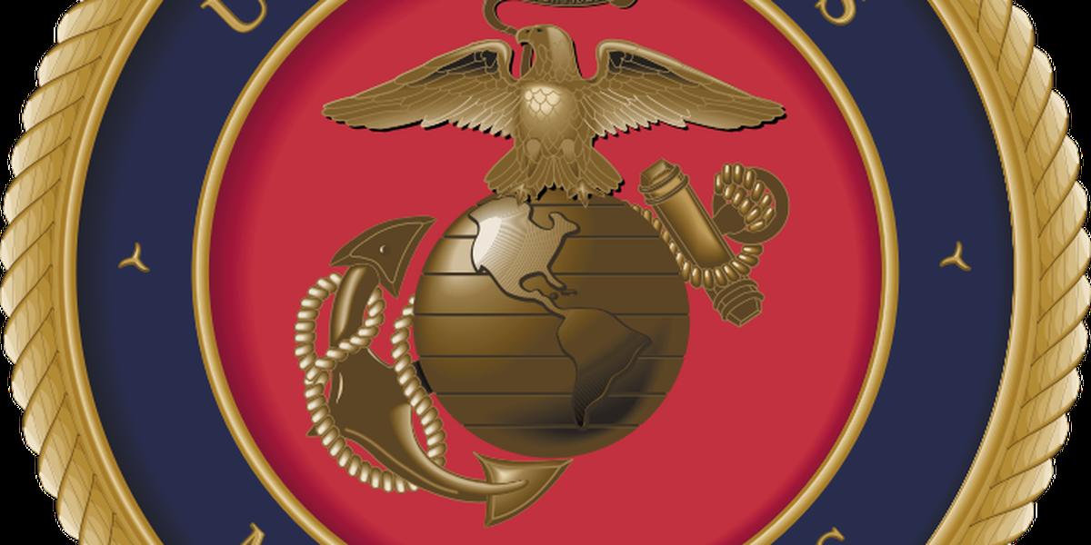Happy Birthday, U.S. Marine Corps!