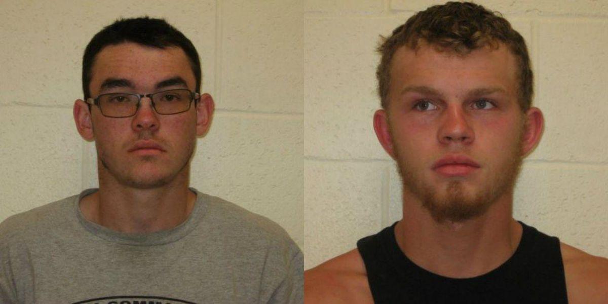 4 arrested for 'destroying' piglets, 2 in Franklin Co., IL jail