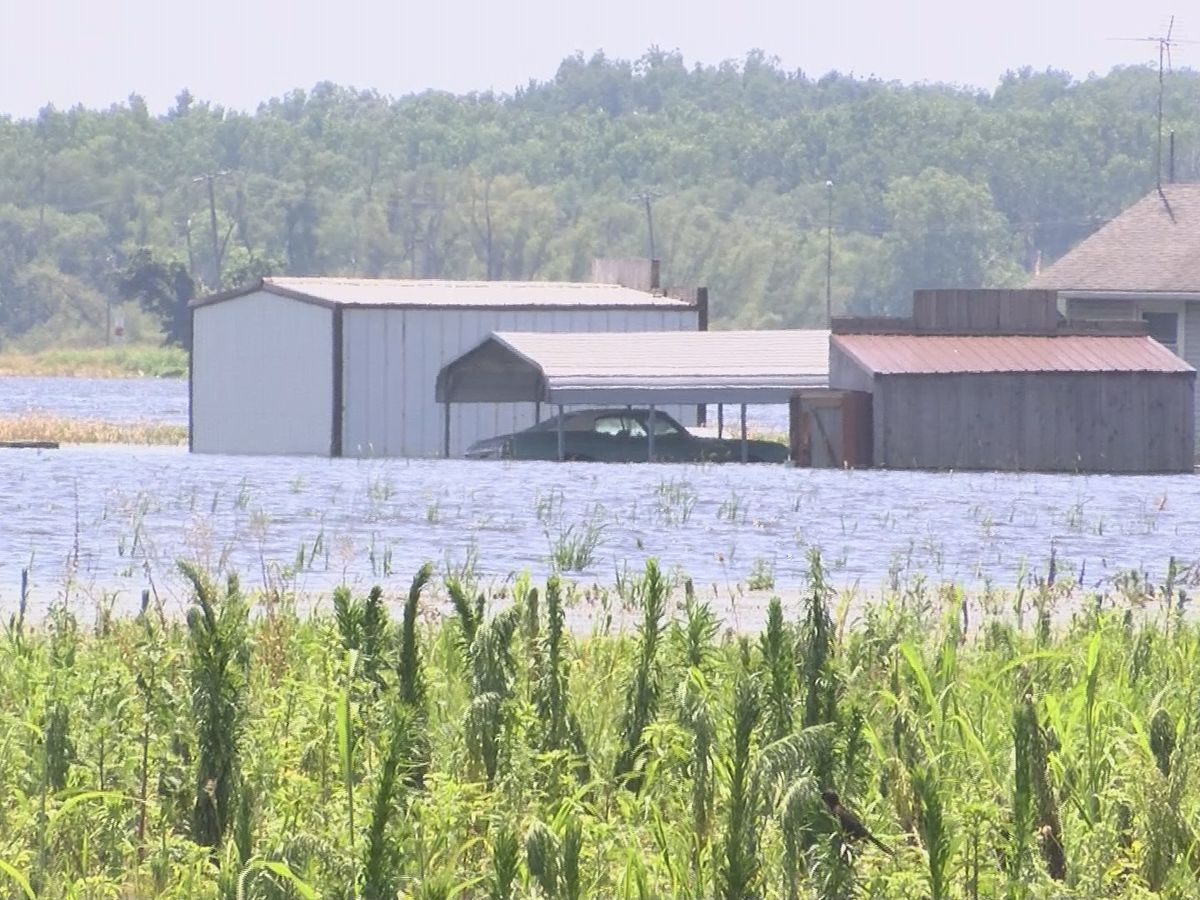 Man escapes flooding in McClure, IL, worries homes will be lost