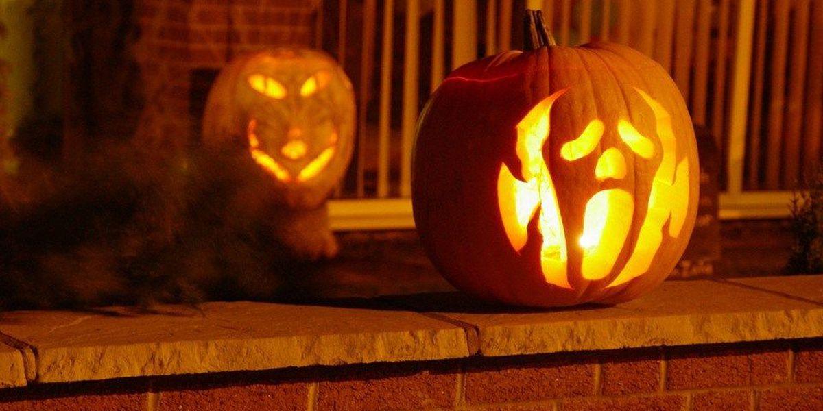 Last minute pumpkin carving templates