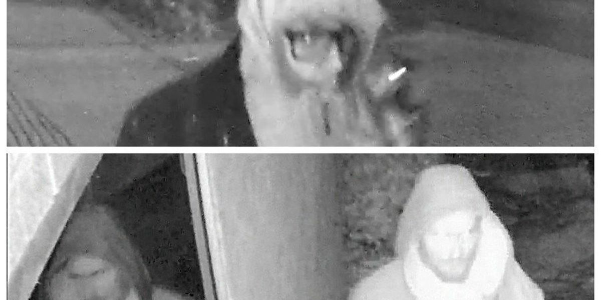 Police searching for people suspected of vandalizing Carbondale, IL buildings