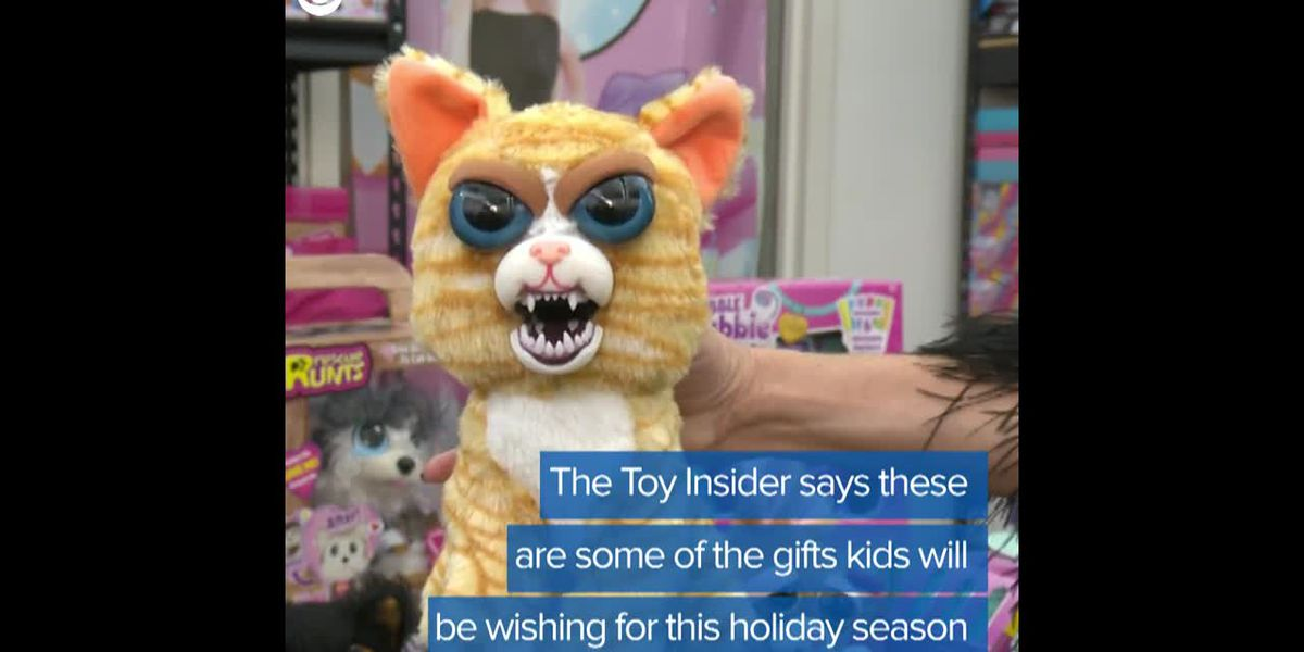 Hot toys for the holidays
