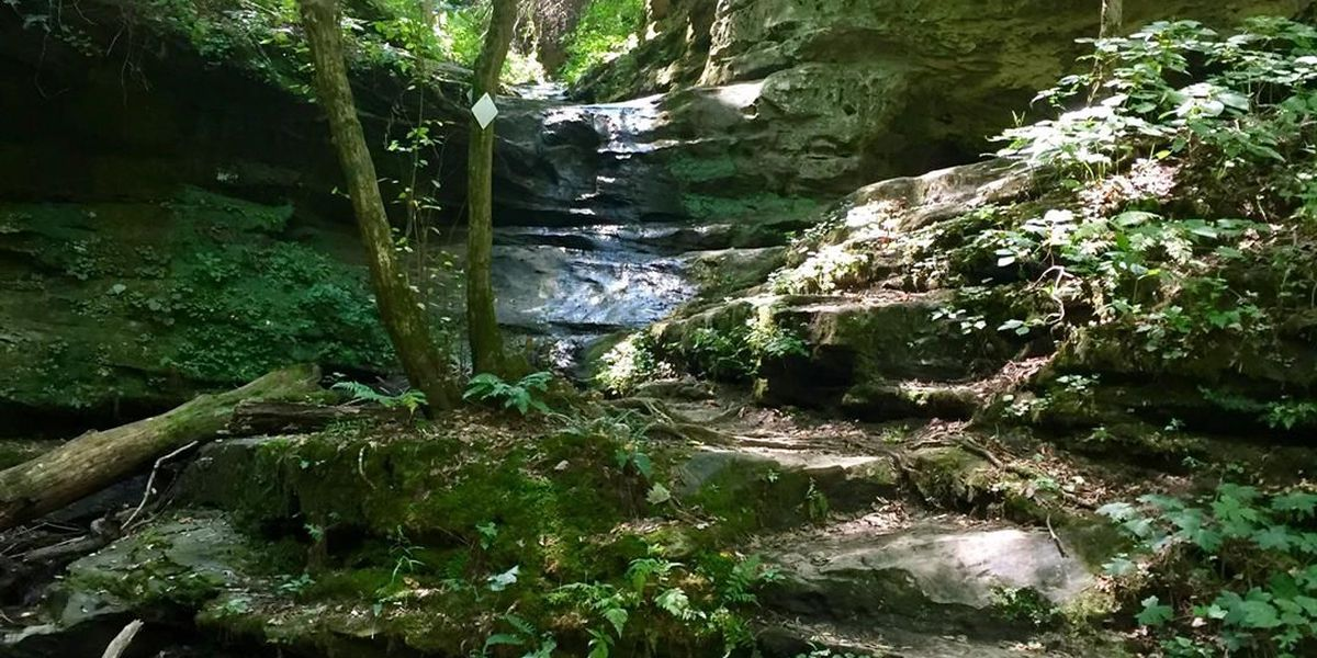 Woman seriously injured after fall at Little Grand Canyon in Jackson Co., IL