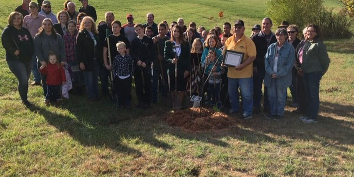 Iconic Liberty Tree clone planted at memorial wall in Perryville