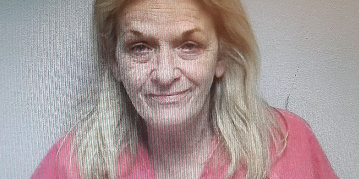 Paducah woman facing DUI and drug charges in Carlisle Co.