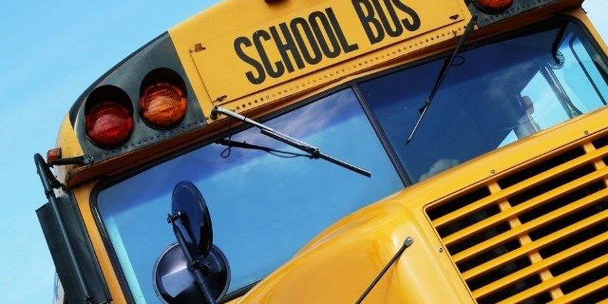 Marion, IL to hold hiring event for school bus drivers