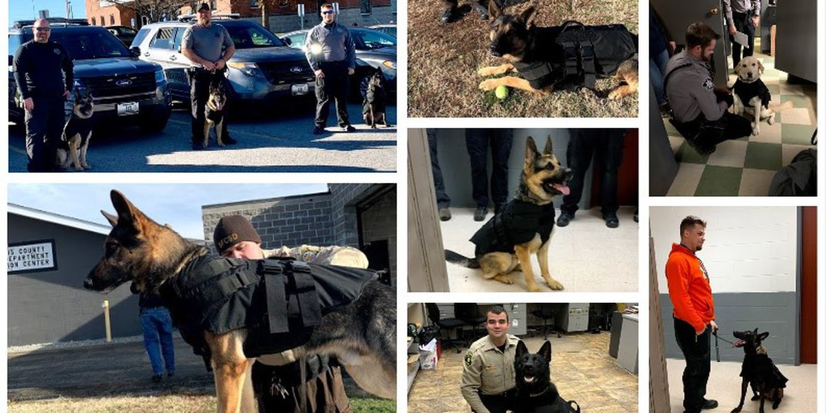 Mo. K-9s to receive new ballistic vests