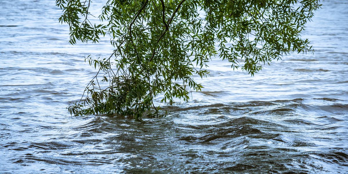Sheriff: Storm sirens to warn Wolf Lake, Ware residents of levee breach