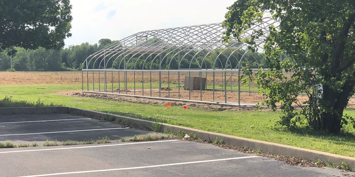 Heartland students experiment growing vegetables