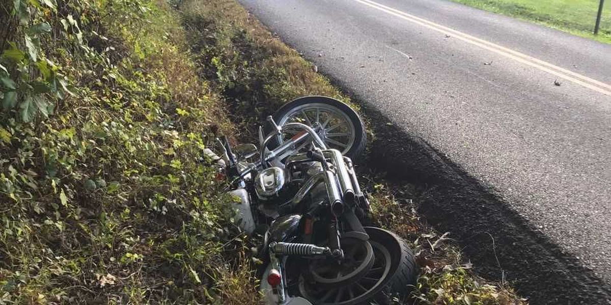 Collision involving deer and motorcycle injures one