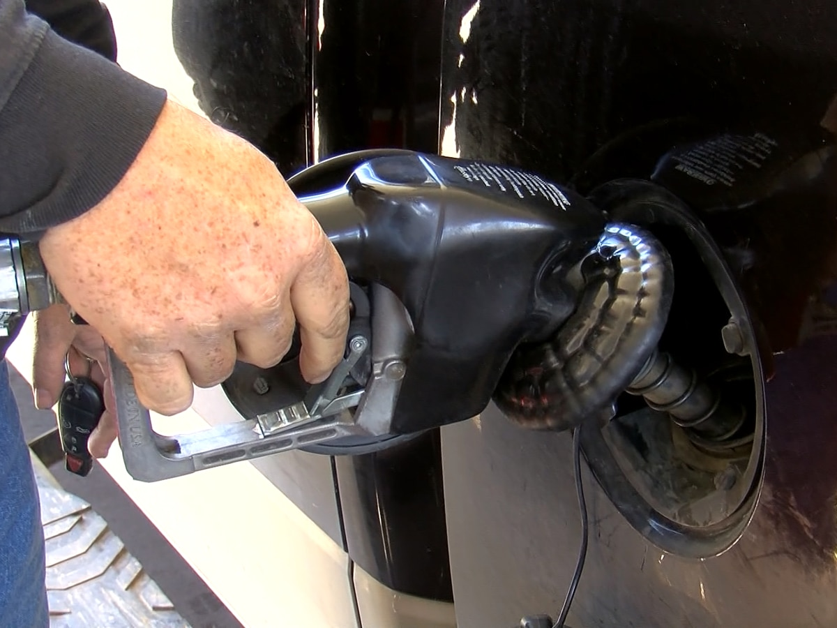 Gas prices 'fairly tame,' holding steady