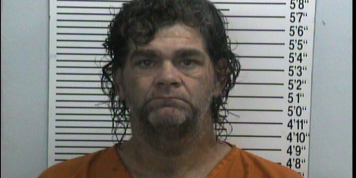 Man accused of taking police car, carjacking woman in Pemiscot Co., Mo.