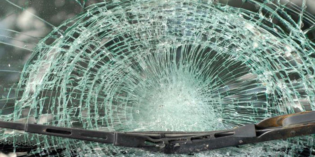 KY man hospitalized after crashing car into tree