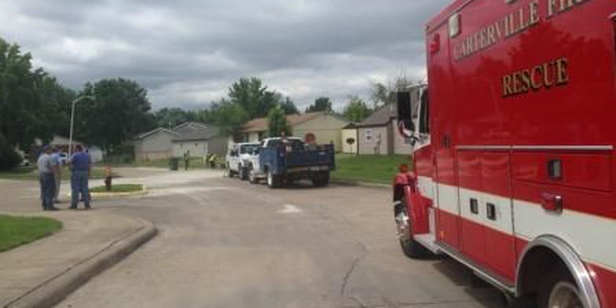 Fuel spills after trash truck hits fire hydrant in Crainville