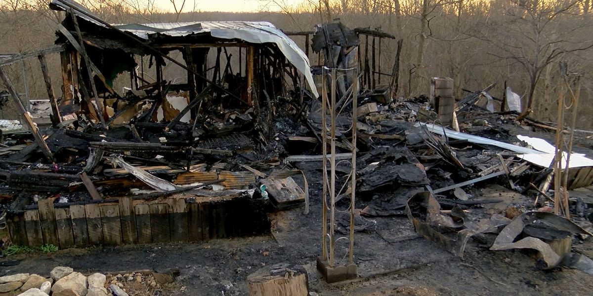 Dogs and pig save sleeping woman from Bullitt Co. house fire