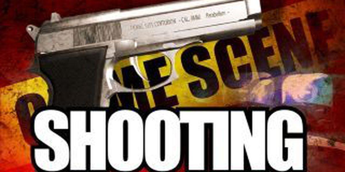 St. Louis burglar shot in face by homeowner