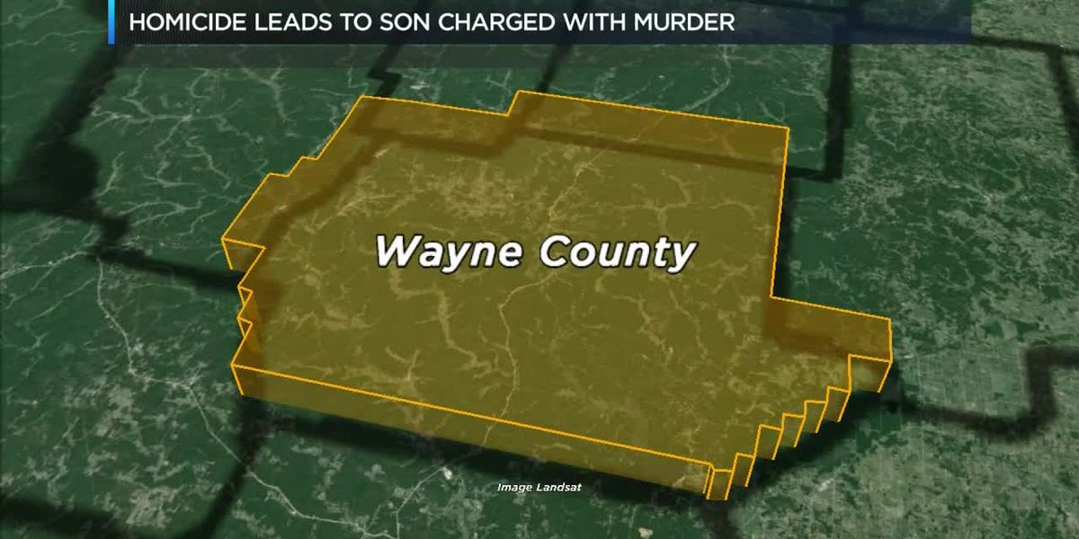 Piedmont woman stabbed to death, her adult son has been charged