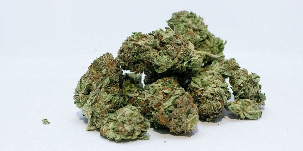 Advocates tout medical marijuana bill in Kentucky